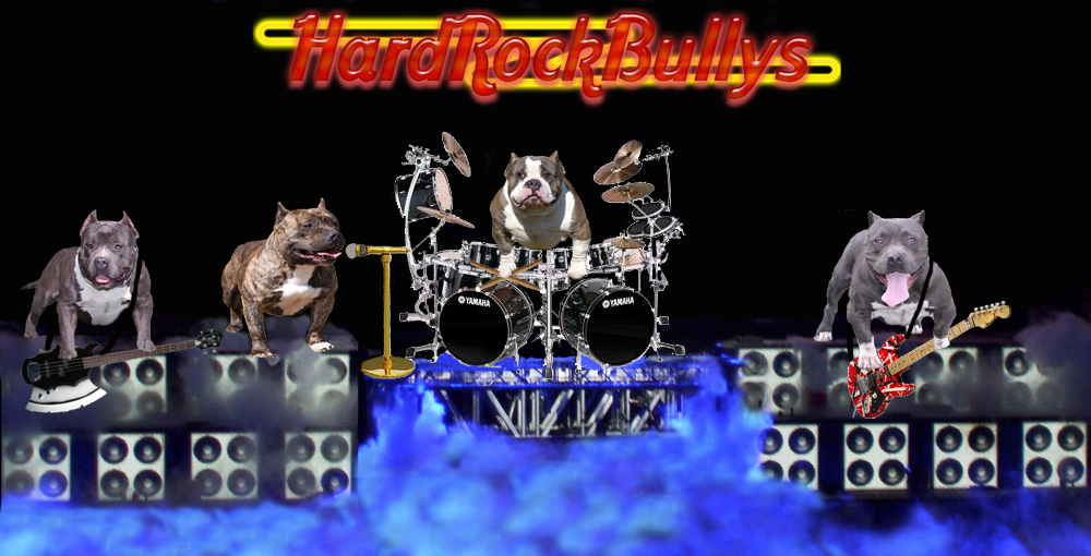 Ultimate Blue Pitbulls Acting Out on Video produced by Don Guerrieri at HardRockBullys