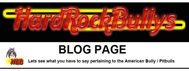 HardRockBullys Blog Page